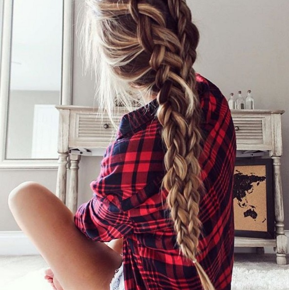 braid iarna11