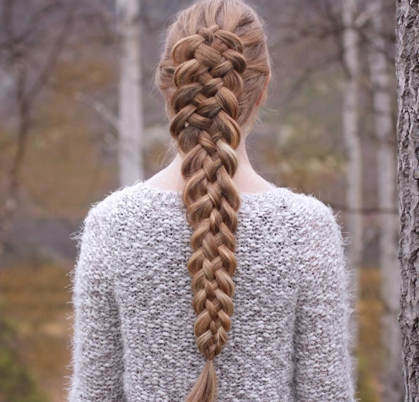 braid iarna4